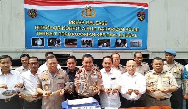 Polairud Gagalkan Penyelundupan Ekspor Kepiting Senilai Rp 4.5 Miliar