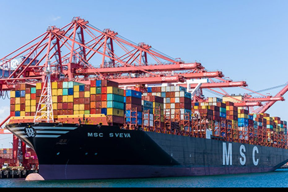 Supporting Efficient Services, MSC Introduces Electronic Bill of Lading