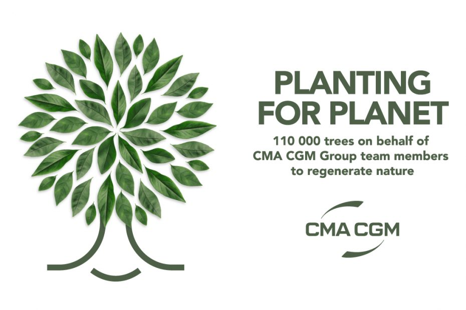 Undertaking Reforestation Initiative, CMA CGM to Plant 25,000 Trees in Indonesia
